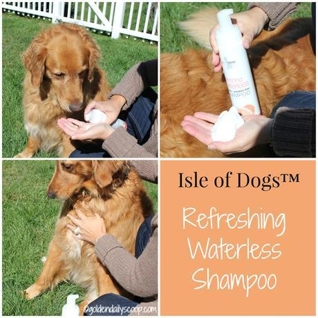 keep your dog clean in between baths with isle of dogs waterless shampoo
