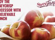 SweeTango Apples Recipes
