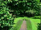Garden Tour: Priory July