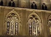 Muenster, Germany: Night Tour Historic Center