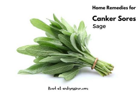 Sage - how to get rid of canker sores
