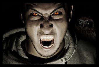 Vampires Essay Dissertation Help