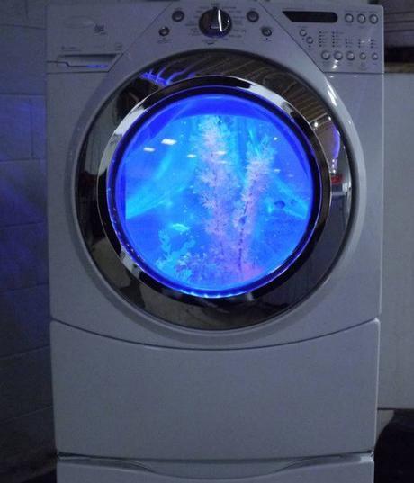 Washing Machine Turned Into an Aquarium