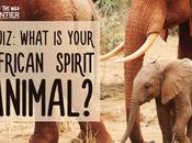 QUIZ: What Your African Spirit Animal?