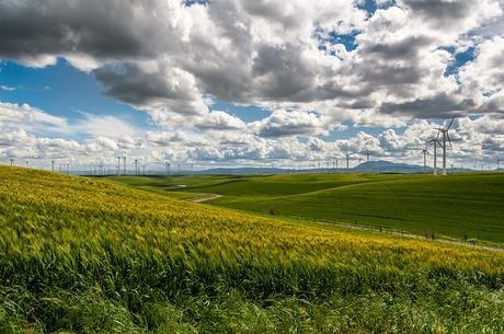 wind-farm-wind-turbine-electricity