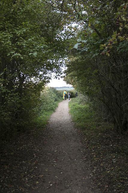 Final Path