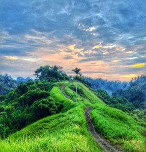 Welcome to bali tropical paradise or living hell paperblog stunning ubud altavistaventures Choice Image