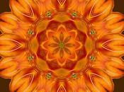 Selu's Song Flower Mandala