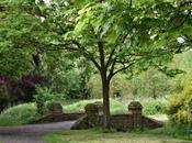 Visit Walsall Arboretum