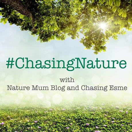 Nature Mum Blog