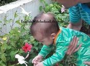 Baby's First Navratri