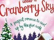 Christmas Under Cranberry Holly Martin #BookReview #Christmas