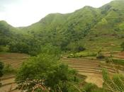 Experience Antique: Cultural Immersion Scenic Antique Rice Terraces