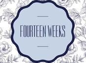Fourteen Weeks