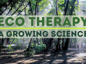 Therapy: Growing Science
