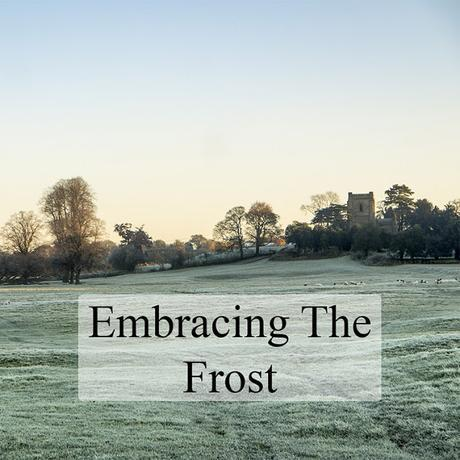 Embracing the Frost - A walk around the Floodplain Forest Nature Reserve in Milton Keynes in the frost