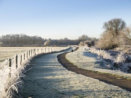 A Frosty Path