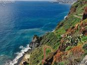Magnificent Colours Madeira