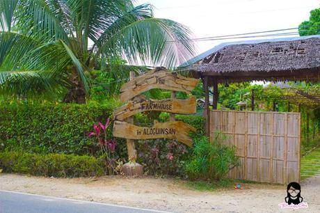 The Farmhouse in Aloguinsan Cebu | Blushing Geek