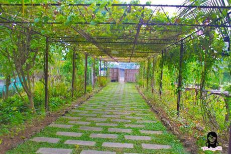 The Farmhouse entrance in Aloguinsan Cebu | Blushing Geek