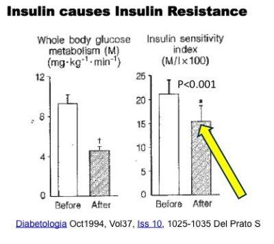 Insulin Causes Insulin Resistance