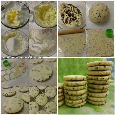 BISCUITS AUX VERMICELLES CHOCOLAT / CHOCOLATE SPRINKLES COOKIES / GALLETAS CON VIRUTAS DE CHOCOLATE / بسكوي بشعرية الشكلاط