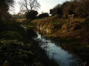 Somerset Coal Canal (Part