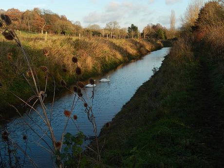 Somerset Coal Canal (Part 1)