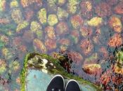 Visiting Ritsurin Garden