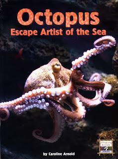 OCTOPUS, ESCAPE ARTIST OF THE SEA