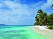 Petit Vincent: Caribbean Gourmet Getaway