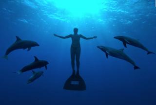 Dolphins & Man