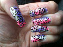 Colored Leopard Mani