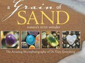 #040 Microphotography Gary Greenberg Grain Sand: Nature's Secret Wonder