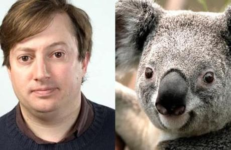 Sure, Benedict Cumberbatch does look awfully like an otter but David Mitchell Is A Koala
