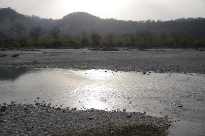 Corbett National Park (In Pictures)
