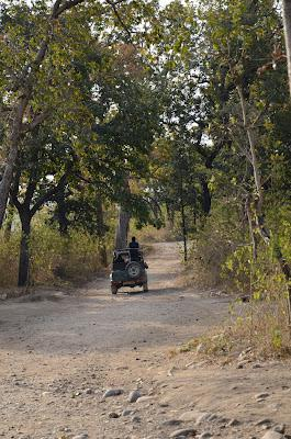 The Myth of the Tiger (Corbett National Park)