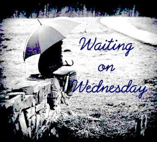 'Waiting On' Wednesday!
