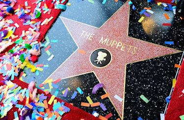 Muppets Finally Recognized With A Star On The Walk Of Fame