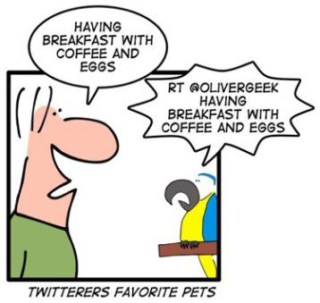Top Pet Tweeters Aren't Just For The Birds