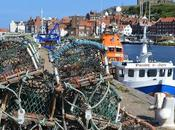 Whitby Fish Chips Daytrippers