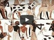 Ancient Egyptian Animals Video