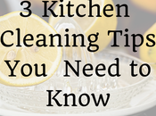 Kitchen Cleaning Tips Need Know