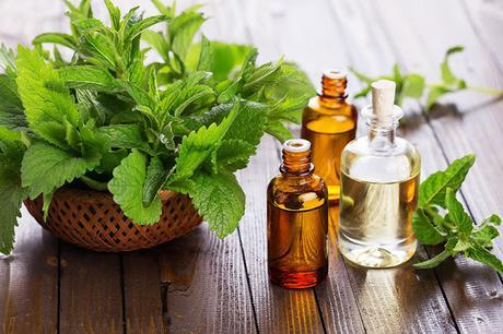 basil leaves and oil