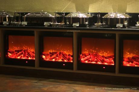 Bar-be-cue Kitchen at Indirapuram Habitat Center - Pictures- food- interior