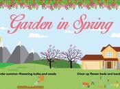 Your Garden Transforms Through Seasons
