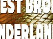 Sixer's Sevens: West Brom SAFC. Honeyman Throwing Towel
