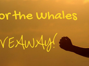 Join Walk Whales