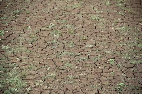 dry-global-warming-dehydrated