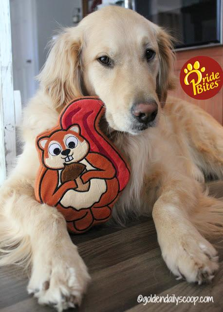 pridebites customized dog toys and accessories